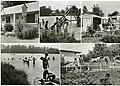 30265-Radeburg-1980-Campingplatz Röderstausee-Brück & Sohn Kunstverlag.jpg