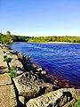 3404. Gladyshevsky reserve. Chyornaya River.jpg