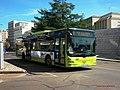 367 Tubasa - Flickr - antoniovera1.jpg