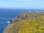 3986.Cap Frehel-Über 70m ragt das Cap Frehel aus dem Meer-Cote de Emeraude,Village Plevenon im Departement Cote de Armor,Region Bretagne