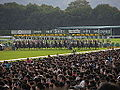 39th Queen Elizabeth II Cup - Kyoto Racecourse (15284564263).jpg