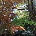 4 Chome Hase, Kamakura-shi, Kanagawa-ken 248-0016, Japan - panoramio (4).jpg