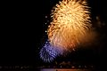 4th of July Fireworks - Ala Moana Beach Park (4779660096).jpg