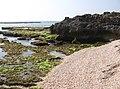 6 מפרץ הצדפים , שמורת חוף דור-הבונים.jpg