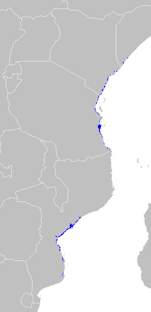 East African mangroves - Image: AT1402 map