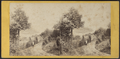 A View from Idlewild, by E. & H.T. Anthony (Firm) 4.png