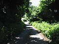 A shaded lane near North Court, Swingfield Street - geograph.org.uk - 837453.jpg