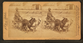 A stylish Virginia turnout, U.S.A. (showing African American boy in goat cart), by Jarvis, J. F. (John F.), b. 1850.png