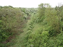 Abandoned railway (South) - geograph.org.uk - 428884.jpg