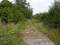 Abandoned track, Croxton Kerrial - geograph.org.uk - 30069.jpg