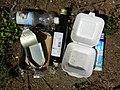 Abfall in der Natur.jpg
