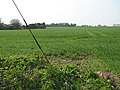 Across the field - geograph.org.uk - 1257865.jpg