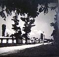 Aerodrom novoizgradena naselba, 1964.jpg