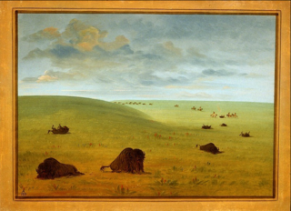 After the Buffalo Chase - Sioux