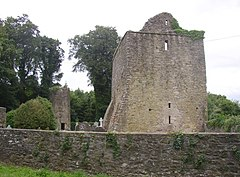 Aghaviller ruined church and round tower, Newmarket, Co. Kilkenny - geograph.org.uk - 206920.jpg