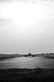 Airbus A319-111 VP-BDM Aeroflot (3773733656).jpg