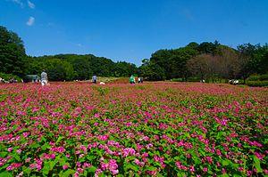 Namegawa, Saitama - Musashi Kyūryō National Government Park