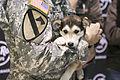 Alaska Guardsman's kennel offers healing to battle wounded, weary 141213-Z-CA180-078.jpg