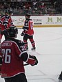 Albany Devils vs. Portland Pirates - December 28, 2013 (11622405053).jpg
