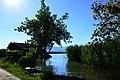 Am Neuenburgersee-Ufer bei Portalban.jpg