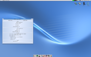 A screenshot of the desktop with a panel on the bottom.