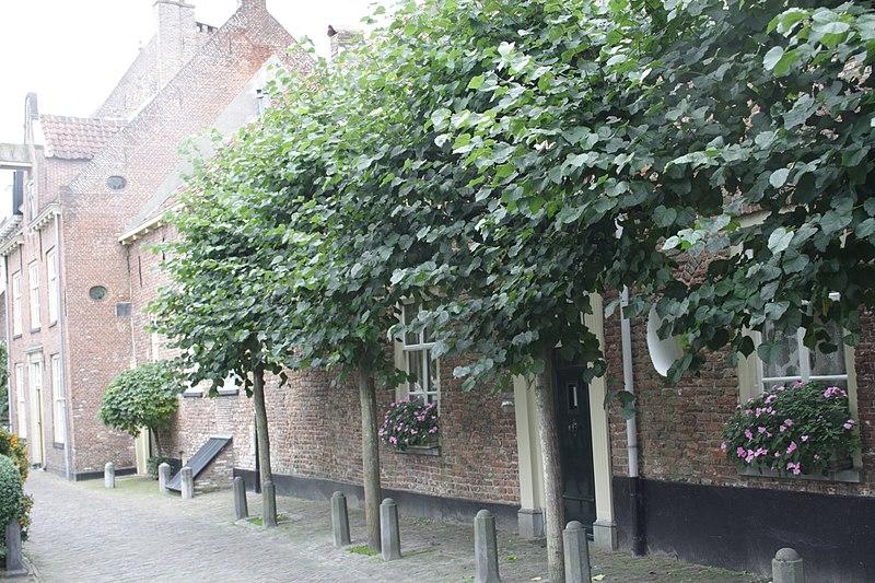 File:Amersfoort.Muurhuizen.13.JPG
