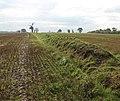 An ancient field boundary - geograph.org.uk - 1031083.jpg