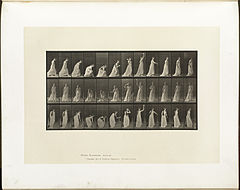 Animal locomotion. Plate 306 (Boston Public Library).jpg