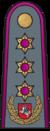 Antpetis sausumos 18 generolas leitenantas.png