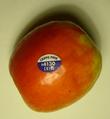 Apple plu 4130 1.png