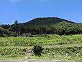 Aratakiyama Castle overview.JPG