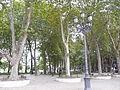 Arenal P1270254.jpg
