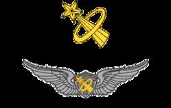 United States Aviator Badge - Wikipedia