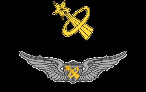 army astronaut badge - 900×420