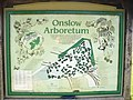 Around the World in Eighty Trees - geograph.org.uk - 1215731.jpg
