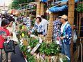 Asagao Festival 002.JPG