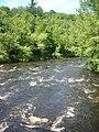 Ashuelot River 072207 268.jpg