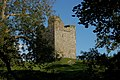Audley's Castle, through trees.jpg
