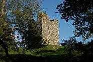 Audley's Castle, through trees