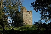 Audley's Castle, through trees.jpg