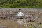 Aufeis cone at Joe Creek-Firth River confluence, Ivvavik National Park, YT.jpg