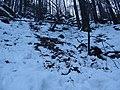 Avalanche (3253021877).jpg