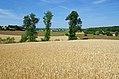 Avon-les-Roches (Indre-et-Loire) (14399304308).jpg