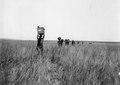 Bärarna går genom grässlätt. Makubrva. Kongo-Kinshasa - SMVK - 0713.0094.tif