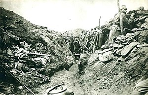 Bosnian-Herzegovinian Infantry - A Bosniak infantry position in Eastern Galicia in WWI.
