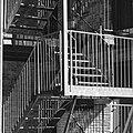 B W Stairs (250731317).jpeg