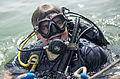 Bahrain ATFP dive 130415-N-PX130-064.jpg