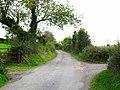 Ballybryan Road, Greyabbey - geograph.org.uk - 1509790.jpg