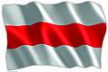 Bandera Institucional.jpg