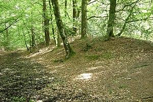 Castle Dyke - Rampart and ditch inside Castle Dyke